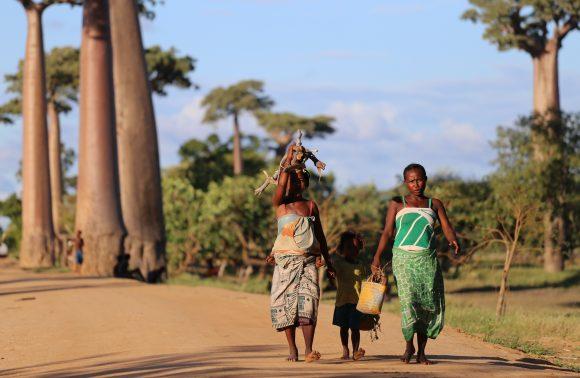 MADAGASCAR – Merina, Sakalava et Vezo