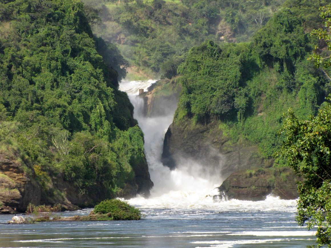 OUGANDA – Echos des forêts impénétrables