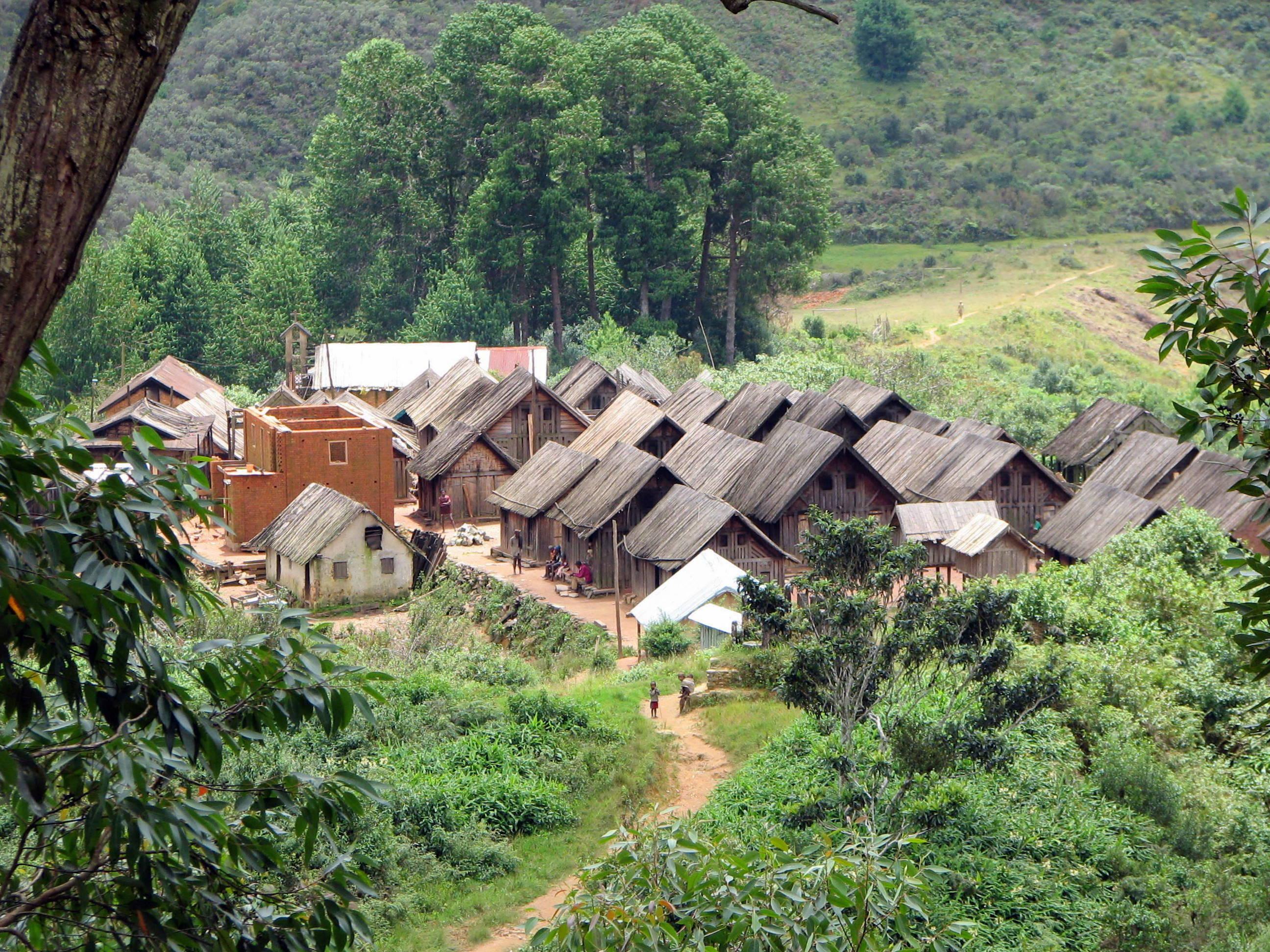 Pays Zafimaniry à Ambositra