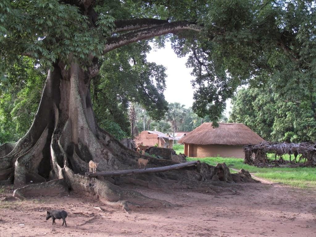 Mlomp Casamance