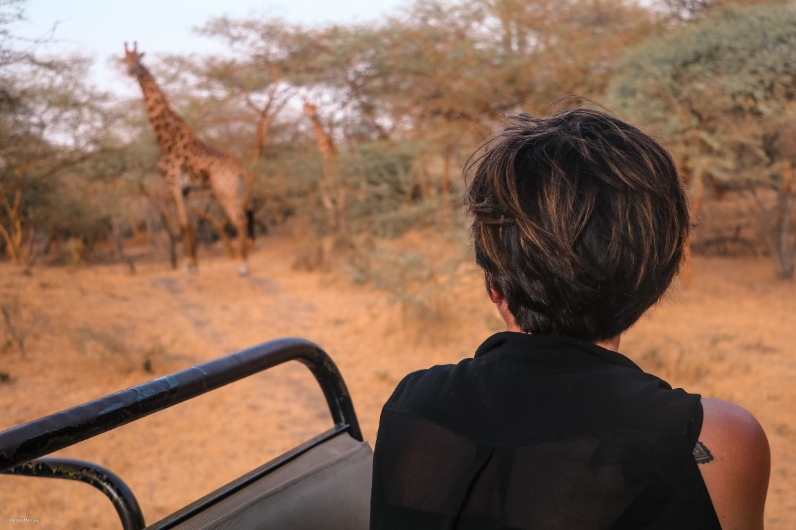 Voyage dans le Sine Saloum avec La Girafe qui vole