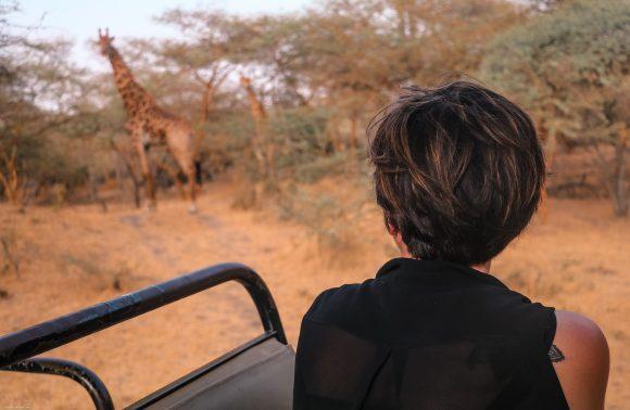 SÉNÉGAL – Au fil du Sine Saloum avec la Girafe qui Vole